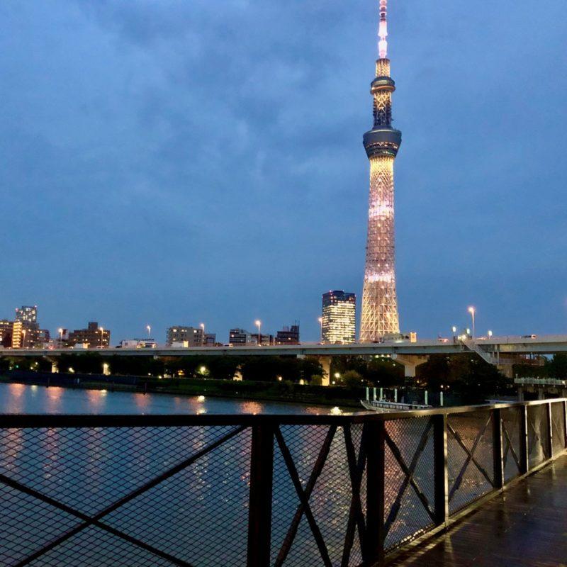 すみだリバーウォークから見える東京スカイツリー
