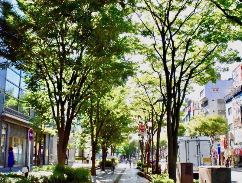 錦糸町駅(北口)からすぐの「北斎通り」