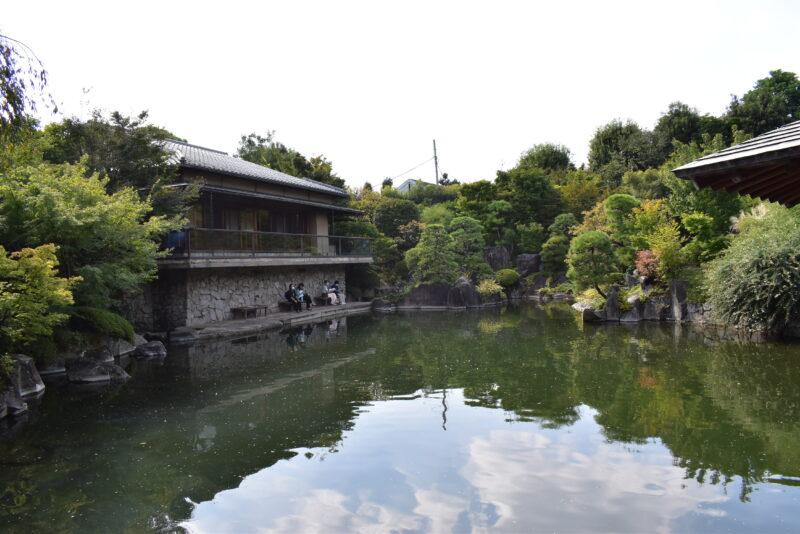 目白庭園中の池